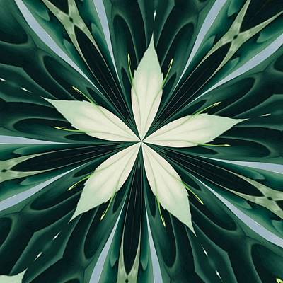 Digital Art - White Leaves In A Green Forest Kaleidoscope by Tracey Harrington-Simpson