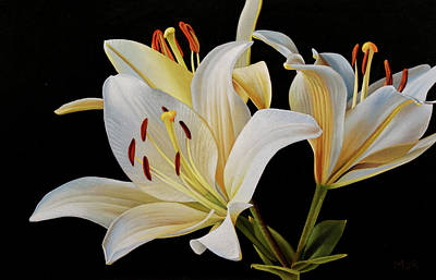 Painting - White Lillies by Dietrich Moravec