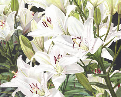 Painting - White Lilies by Robin Manelis