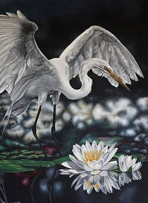 Painting - White Lily by Katie McConnachie