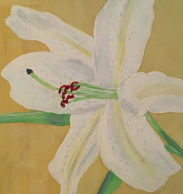 Painting - White Lily Study by Rebecca Gilsdorf