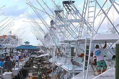 Beach Royalty-Free and Rights-Managed Images - White Marlin Open Docks by Carey Chen