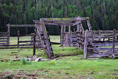 Digital Art - White Mountain Corral by Tom Janca