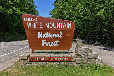 Photograph - White Mountain National Forest Sign by Brian MacLean