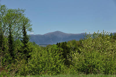 Photograph - White Mountain View by Donna Doherty