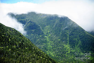 Photograph - White Mountains by Alana Ranney