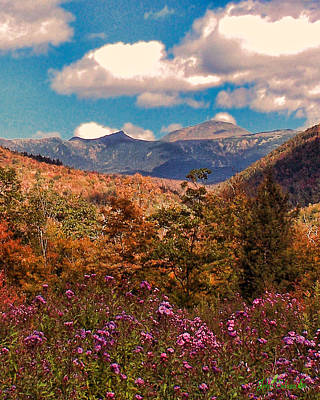 Digital Art - White Mt. Autumn by John Selmer Sr