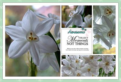 Photograph - White Narcissi Moments by Joan-Violet Stretch
