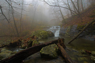 Photograph - White Oak Canyon Safari by Michael Balen