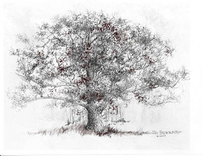 White Oak Art Print