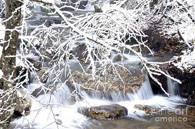 White Oak Run With Snow Art Print by Thomas R Fletcher