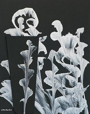Painting - White On Black Abstract Lillies by Jean Clarke
