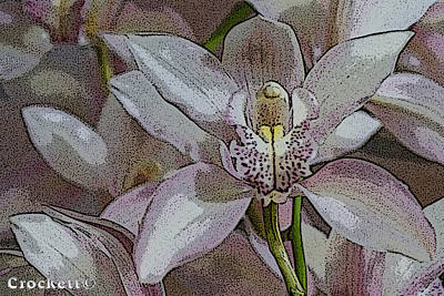 Photograph - White Orchid Flower by Gary Crockett