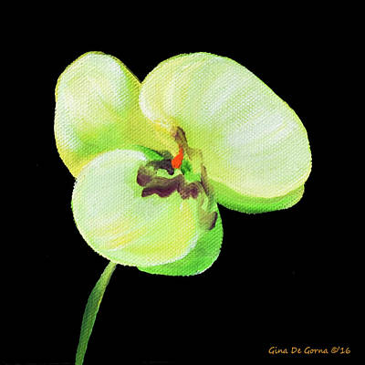 Painting - White Orchid by Gina De Gorna