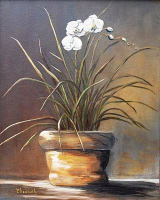 White Orchid In Oil Art Print by Beth Maddox