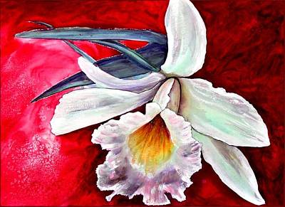 Painting - White Orchid by Ryn Shell
