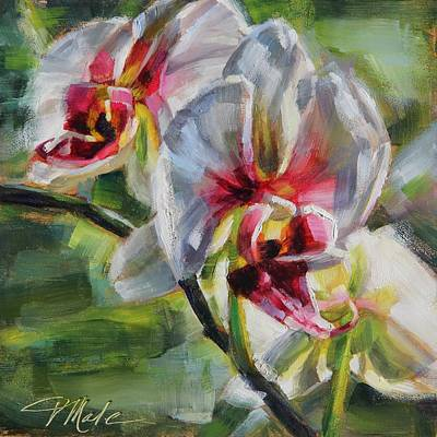 Painting - White Orchid by Tracy Male