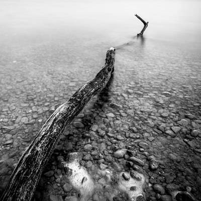 Photograph - White Out by Alexander Kunz