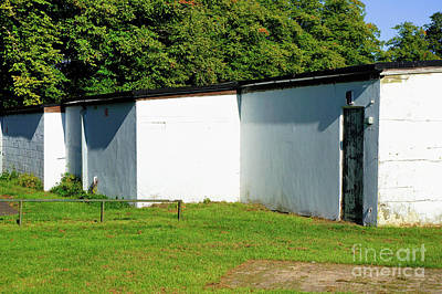 Photograph - White Outbuilding by Tom Gowanlock