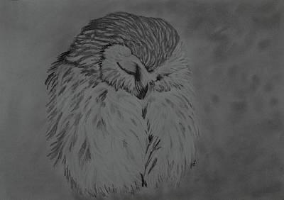 White Owl Art Print by Maria Woithofer