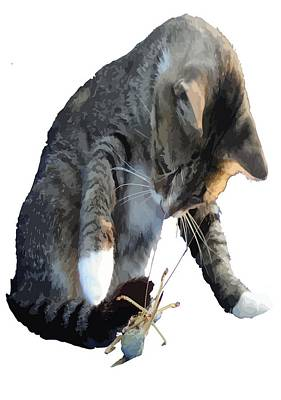 Photograph - White Pawed Tabby Cat Playing With Winged Insect by Tracey Harrington-Simpson