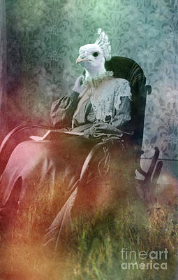 Photograph - White Peacock by Angel Ciesniarska
