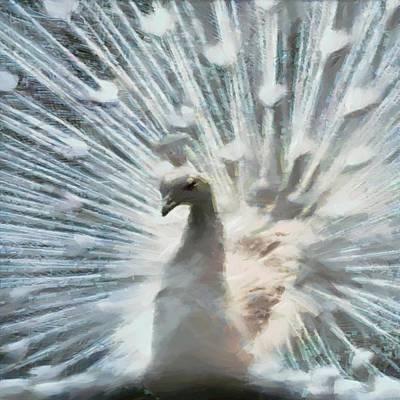 Digital Art - White Peacock by Charmaine Zoe