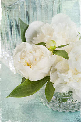 Photograph - White Peony 1 by Jill Love