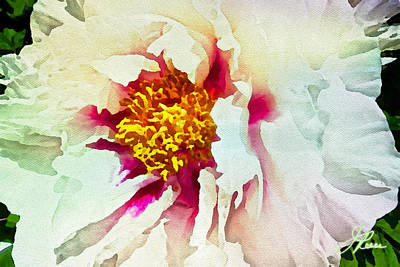 Art Print featuring the painting White Peony by Joan Reese