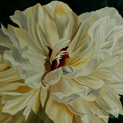 White Peony Art Print by Julie Pflanzer