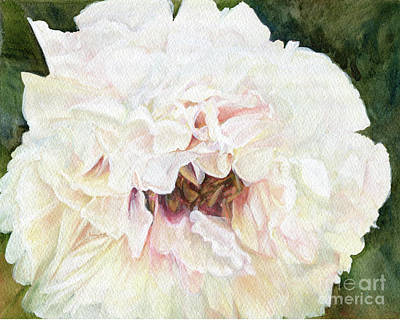Painting - White Peony by Laurie Rohner