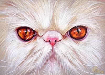 Drawing - White Persian Cat by Elena Kolotusha