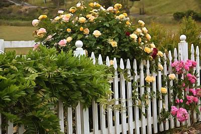 Photograph - White Picket Fence Harmony by Barbara Snyder