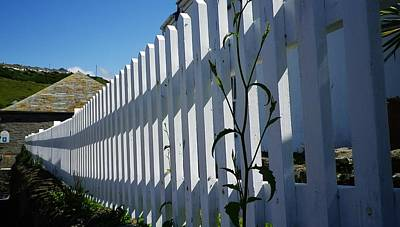Photograph - White Picket Fence Port Isaac by Richard Brookes