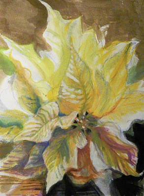 Painting - White Poinsettia by Elaine Hines
