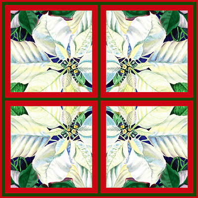 Painting - White Poinsettia Quartet by Irina Sztukowski
