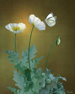 Digital Art - White Poppies by IM Spadecaller