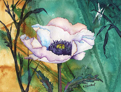 White Poppy On Teal Art Print by Renee Chastant