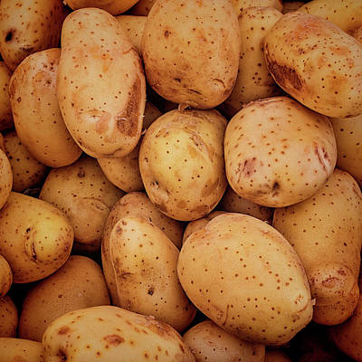 Photograph - White Potatoes by Lewis Mann