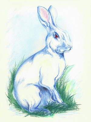 Pastel - White Rabbit In The Grass by MM Anderson