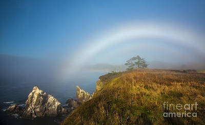 Photograph - White Rainbow Over Ocean Bluff by Jerry Cowart