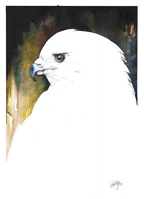 Mixed Media - White Red-tail by Anthony Burks Sr