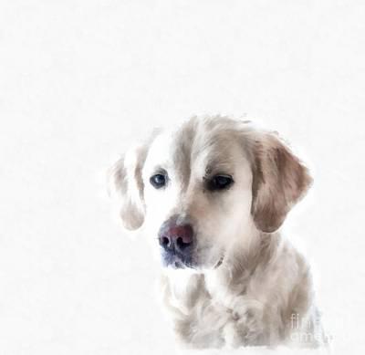 Digital Art - White Retriever Puppy Dog Painting  by Edward Fielding