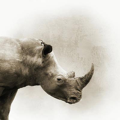 Photograph - White Rhino Sepia Closeup Square by Susan Schmitz