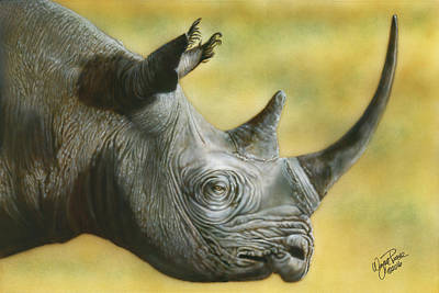 Painting - White Rhino by Wayne Pruse
