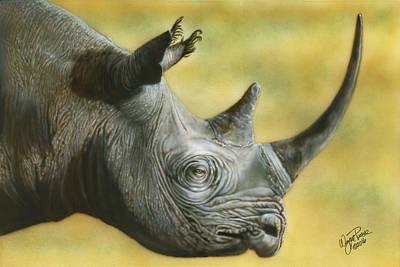 Painting - White Rhino by Wayne Pruse
