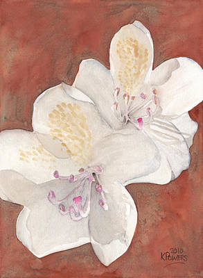 Painting - White Rhododendron by Ken Powers