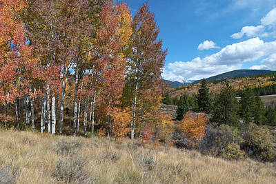 Photograph - White River National Forest Autumn Landscape by Cascade Colors