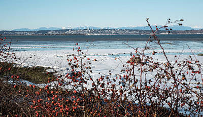 Photograph - White Rock And White Shore by Tom Cochran