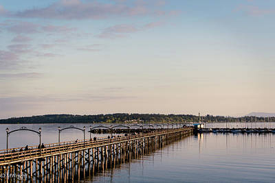 Photograph - White Rock Pier by Michele Wright